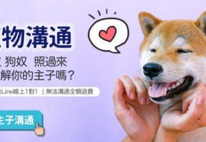 寵物溝通 pet-psychic