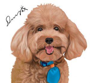 寵物/人物插畫繪製